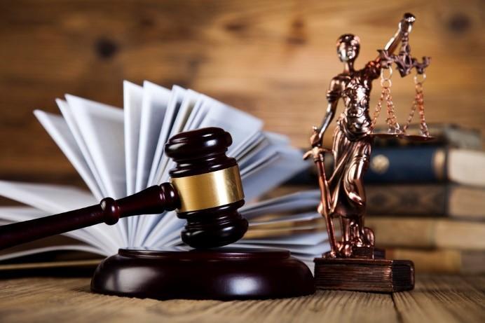 Вся статья касается суда